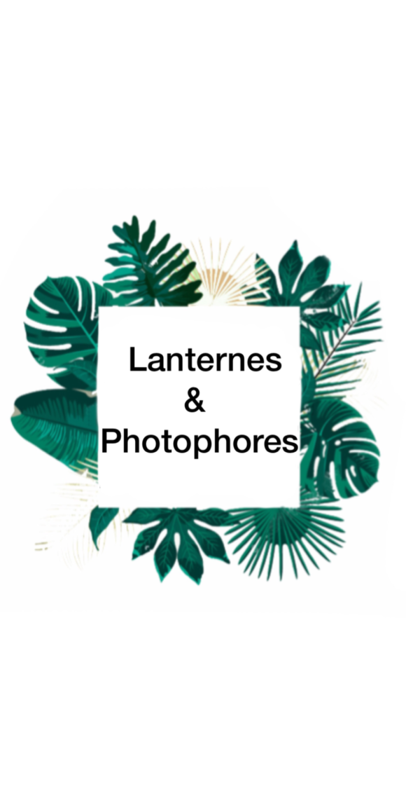 Lanternes & Bougeoirs